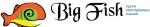 Курсы английского Big Fish