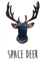 Курсы английского Space Deer